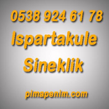 ıspartakule sineklik