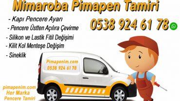 Mimaroba Pimapen Tamiri